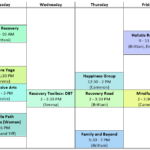 Triangle Wellness and recovery group schedule